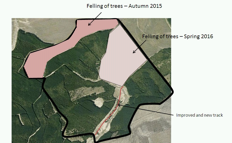 2015 and 2016 felling of coalburn catchment