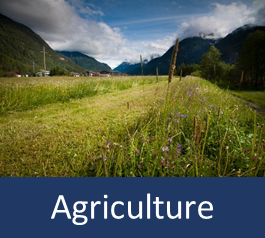 Graphic with text: agriculture